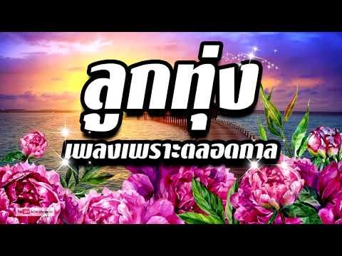 อมตะเพลงไทยเพลงฮิตติดชาร์ต หายากลูกทุ่งเพลงเพราะตลอดกาล ฟังเพลินแบบต่อเนื่อง